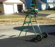 Rolling Step Ladder  *Price Drop* in Naperville, Illinois