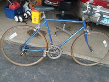 Vintage 1983 Sears FREESPIRIT DYNASTY 10 Speed Lightweight Boys/Mens 27in Bicycle Model# 502.472552 in Naperville, Illinois