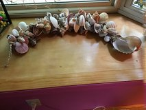 Natural shells on a rope in Fort Campbell, Kentucky