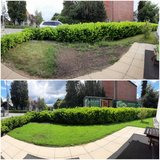 Small Lawns Recovery in Stuttgart, GE