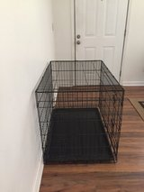 Dog wire crates in Beaufort, South Carolina