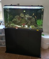 SeaClear 50 gallon Acrylic Aquarium w/ Stand and many extras in Kingwood, Texas