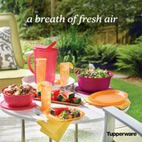 (Host) a Tupperware Party..! in Kingwood, Texas