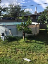 48 inches deep 16 feet wide swimming pool in Alamogordo, New Mexico