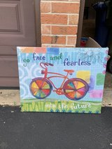 Bicycle Canvas in Naperville, Illinois
