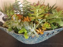 A ceramic designed boat filled with a variety of succulents in Camp Pendleton, California