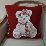 NEW Pottery Barn Teddy Bear Cozy Pillow Cover in Naperville, Illinois