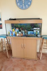 Fish tank, 200 L. ,Day and night light and all accessories in Ramstein, Germany