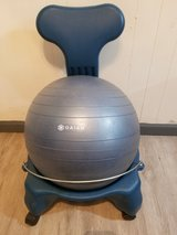 Exercise chair and ball in Alamogordo, New Mexico
