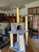 CAT PLAY GROUND WITH SCRATCHING  POST  FOR SALE in Kingwood, Texas