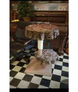 cat stand in Conroe, Texas