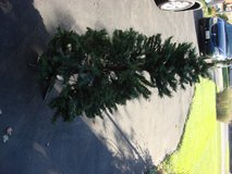 FOUR FOOT ARTIFICAL CHRISTMAS TREE in Naperville, Illinois