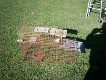 large and small live aminal traps in Elizabethtown, Kentucky