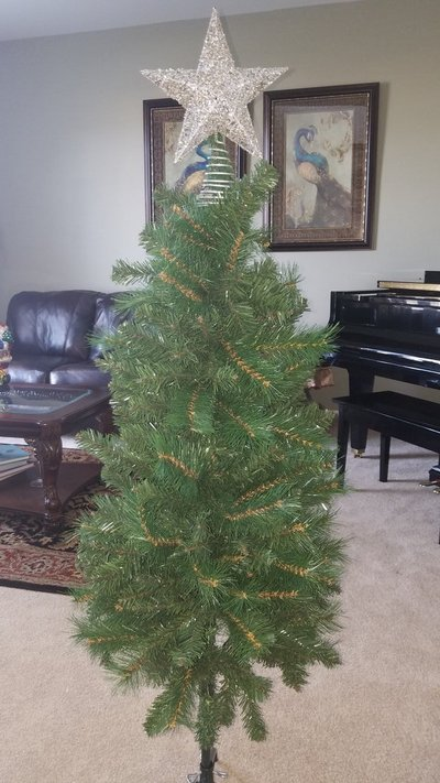 Christmas tree with in Naperville - Christmas Tree With Seasonal & Holiday For Sale On Naperville Bookoo!