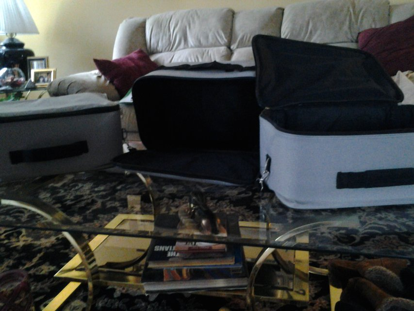 Suitcases 2 4 Clothing Camera Equipment Computer Household For Sale On Naperville Bookoo